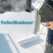 perfectmembranecomposite2
